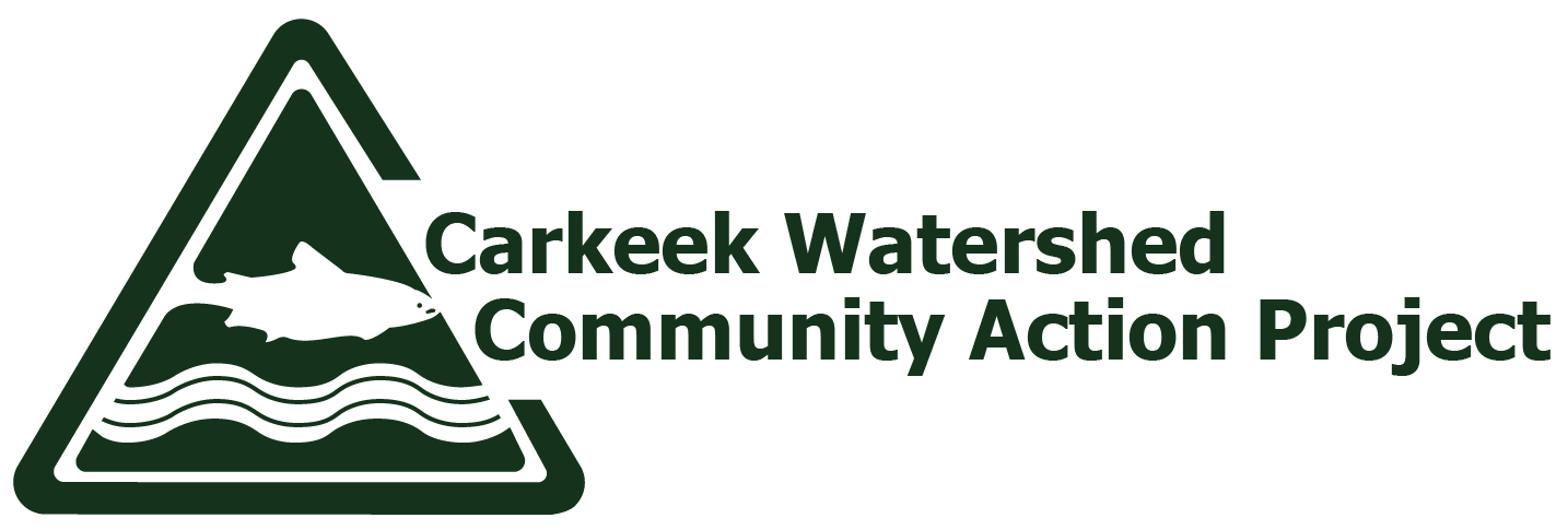 Carkeek Watershed Community Action Project
