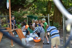 EarthKeepers Day Campers learn to sort and identify aquatic macro-invertebrated; Aug 10, 2016