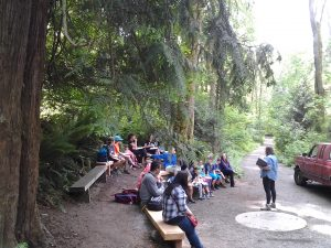 Islandwood_students_Amphitheater_5-17-16